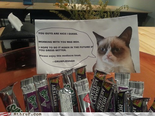 last day at work last day Grumpy Cat