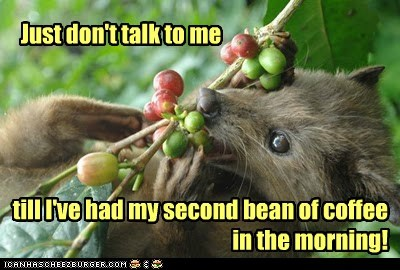 Just don't talk to me till I've had my second bean of coffee in the morning!