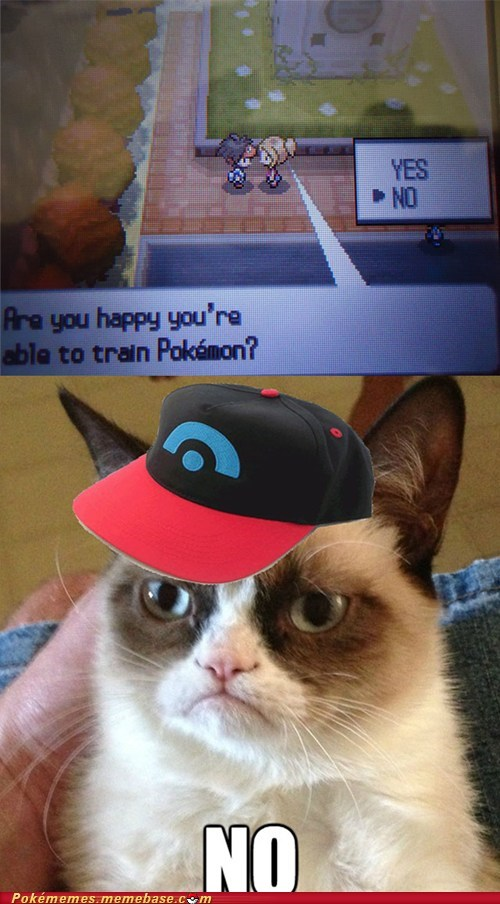 gameplay,happy,Grumpy Cat,pokemon trainer