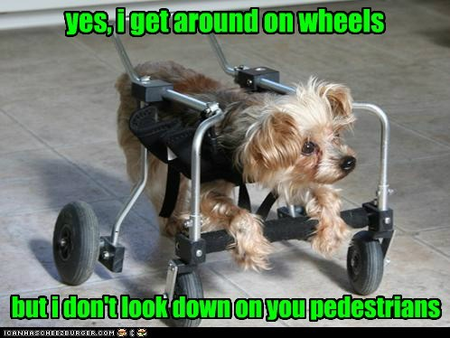 yes, i get around on wheels but i don't look down on you pedestrians