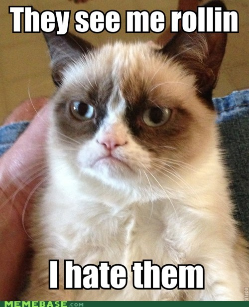 rolling chamillionaire cats tho riding dirty Grumpy Cat captions tard Cats - 6755743744