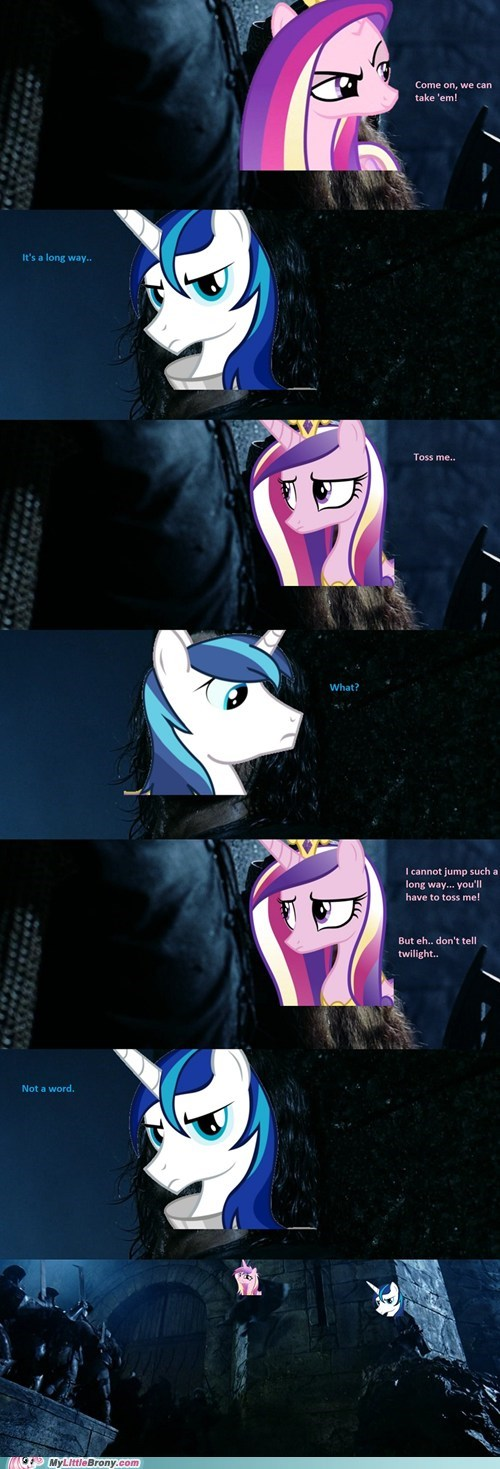 ponies,Lord of the Rings,shining armor,cadence