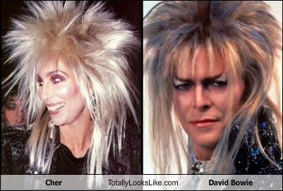 Music TLL david bowie celeb funny cher - 6756647168