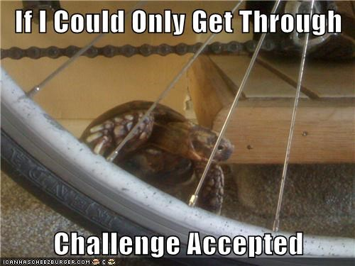 If I Could Only Get Through   Challenge Accepted
