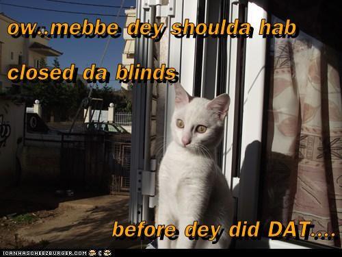 ow..mebbe dey shoulda hab closed da blinds   before dey did DAT....
