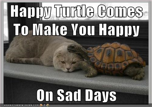 Sad,cast,turtles,comforting,happy