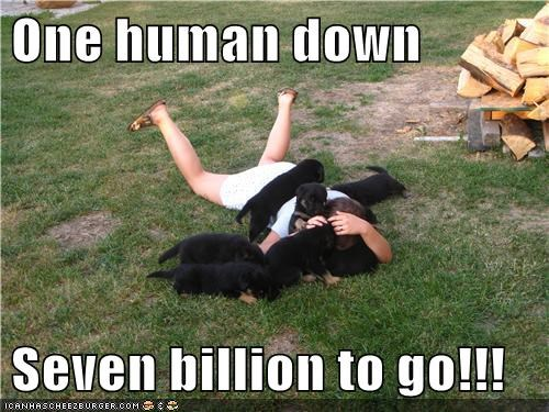 puppies world domination humans what breed - 6757152512