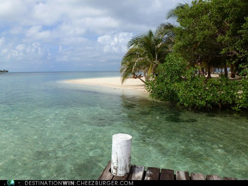 relaxing dock belize beach - 6757646592