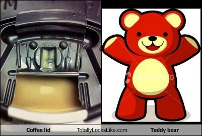 teddy bear,TLL,coffee lid,funny