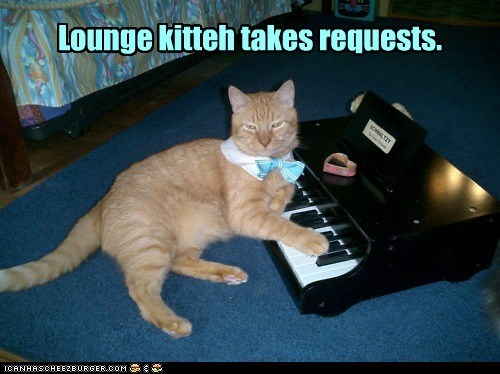 Lounge kitteh takes requests.