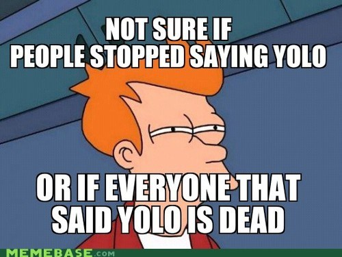 yolo,not sure if,fry meme