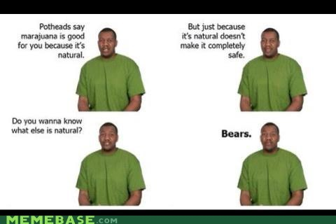 natural,joke ruined by title,bears,drugz