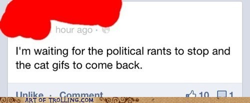 lolcats,facebook,politics