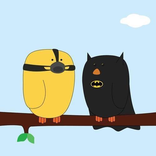 art birds chirp bane batman - 6758727168