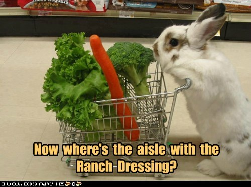 bunnies,vegetables,ranch dressing,grocery shopping,cart,rabbits