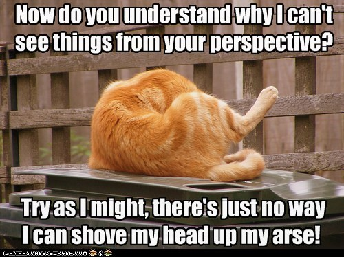 Now do you understand why I can't see things from your perspective? Try as I might, there's just no way I can shove my head up my arse!