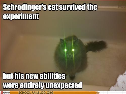 new abilities,experiment,schrodingers-cat