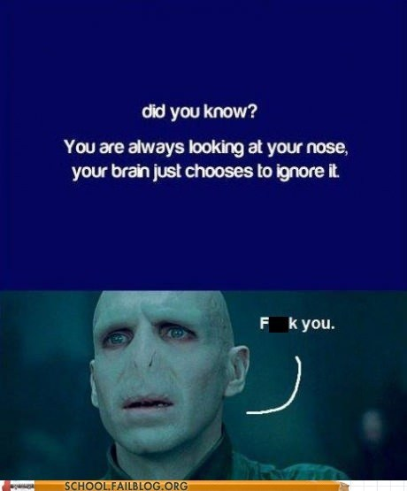 noses,did you know,voldemort,brain