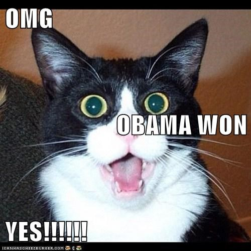 OMG OBAMA WON YES!!!!!!