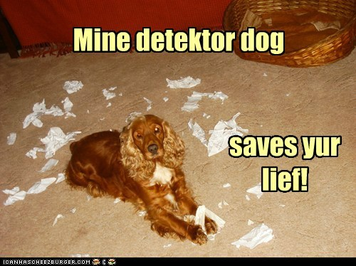 Mine detektor dog saves yur lief!