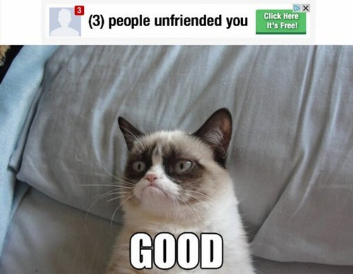 friends,facebook,unfriended,good,Grumpy Cat,tard,Cats