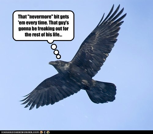 "That ""nevermore"" bit gets 'em every time. That guy's gonna be freaking out for the rest of his life..."