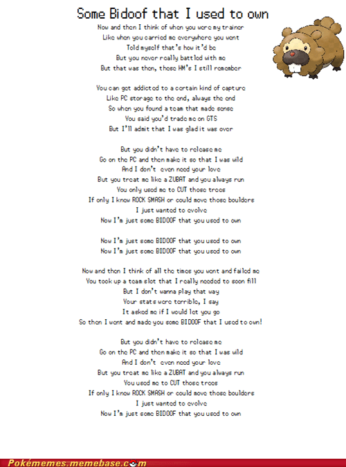 lyrics,parody,somebody that i used to know,bidoof
