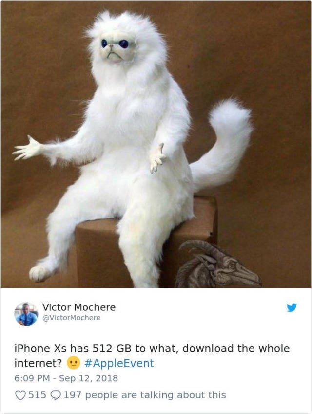 memes about apple and their iphone product and some common meme themes about them
