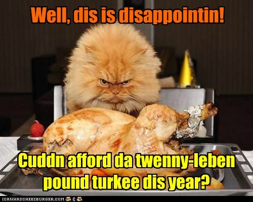 Well, dis is disappointin! Cuddn afford da twenny-leben pound turkee dis year?
