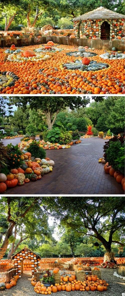 halloween architecture pumpkins - 6761360384