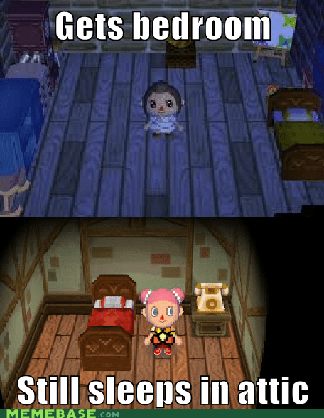 animal crossing,video game logic,nintendo