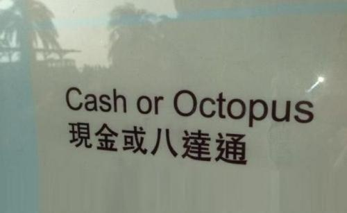 engrish cash octopus payment spelling Hall of Fame best of week - 6761627648
