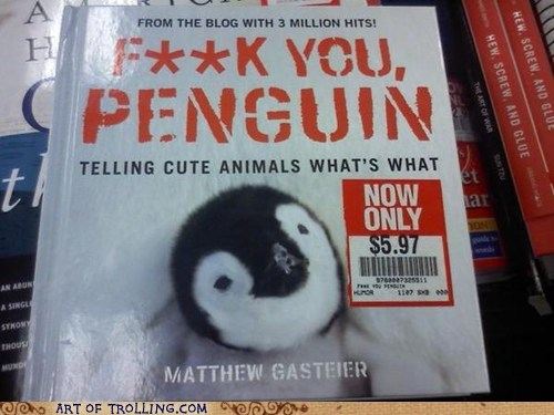 wtf,IRL,penguins,books,animals
