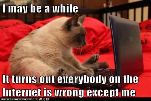 online,internet,captions,correct,wrong,jerk,Cats,commentor