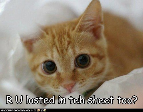 R U losted in teh sheet too?