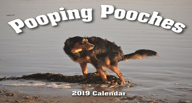 Calendar of pooping dogs that is actually on sale in stores