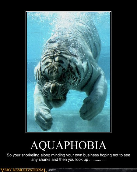 scary tiger aquaphobia