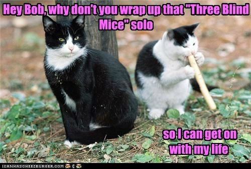 Music,song,solo,three blind mice,captions,childrens song,flute,mice,Cats