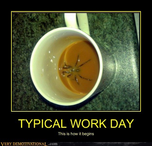 yikes,work,spider,coffee