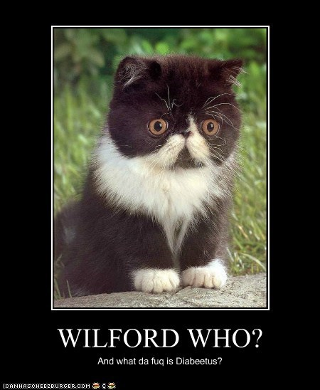 WILFORD WHO? And what da fuq is Diabeetus?
