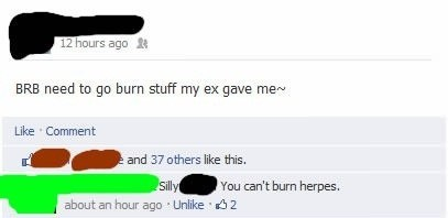 Text - 12 hours ago BRB need to go burn stuff my ex gave me- Like Comment and 37 others like this. You can't burn herpes. Silly about an hour ago Unlike 2