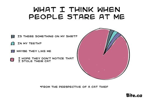 people,Staring,stealing,Cats,Pie Chart