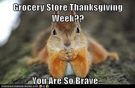 brave,thanksgiving,uh oh,squirrel,grocery store