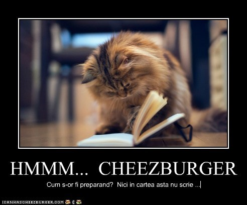 Cheezburger Image 6763277312