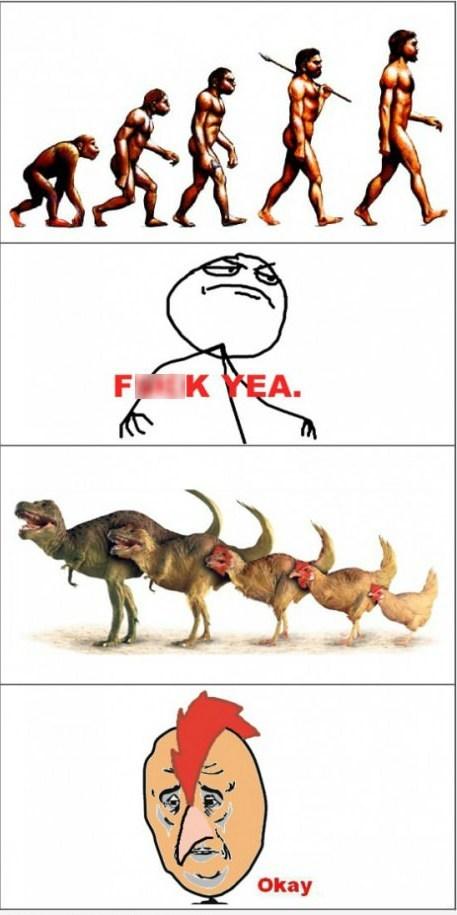 evolution mankind chickens dinosaurs - 6763397888