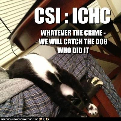 CSI : ICHC