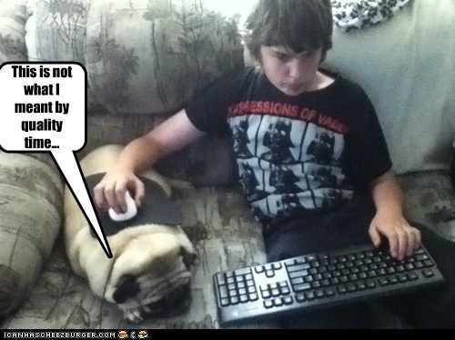 dogs,pug,quality time,computer,mouse pad