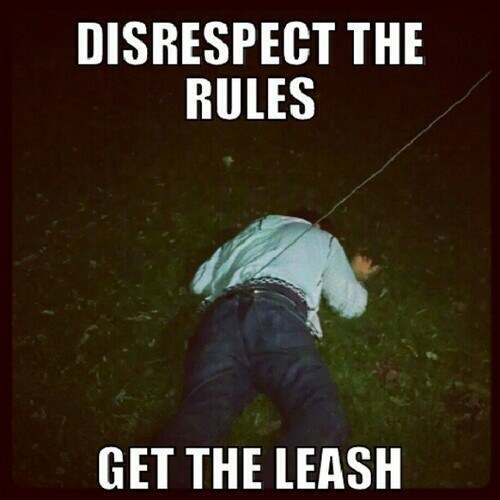 disrespect the rules get the leash handle yourself punishment