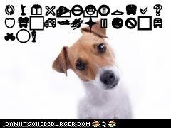Cheezburger Image 6764006144