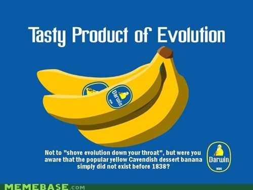 farming evolution banana - 6764747776